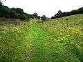 Whitcombe Bottom - geograph.org.uk - 946345.jpg