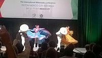 Wikimania 2015 opening ceremony ovedc 20.jpg