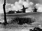 Windmühlen Chrosczinna.jpg
