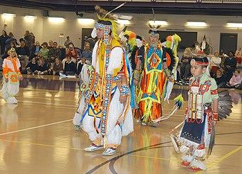 an essay on the winnebago tribe of nebraska Native american tribes in nebraska the santee sioux tribe of the santee reservation of nebraska, and the winnebago tribe of nebraska.