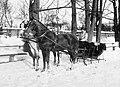 Winter, horse, teamster, coach, sleigh Fortepan 18236.jpg