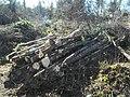 Wood for woodstove - panoramio.jpg