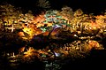 Yuushien Garden at night, Matsue City; November 2014 (03).jpg
