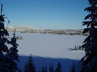 Øyangen (Ringerike) lake in Ringerike, Norway