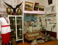 Кролевеьцкий музей 1 зал.png
