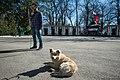 Крым, Варламов, март 2014, 08.jpg