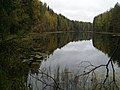 Озеро Локоть - panoramio.jpg