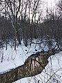 Река Мазиха рядом с с. Шурскол (Ярославская обл.), 2020 г. (01).jpg