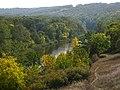 Река Самара ниже села Вольное с вековыми дубами на берегах.jpg