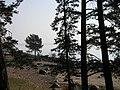 Репино, залив - panoramio (6).jpg