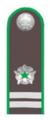 Референт гос.гражданской службы РФ 3 класса (Россельхознадзор).png