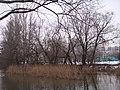 Р.Сходня-3 - panoramio.jpg