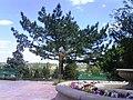 Сквер перед входом в Дендропарк г.Шымкент - panoramio.jpg