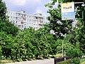 Солнечный. 4 июня 2013г. - panoramio (5).jpg