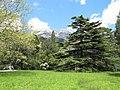 Територія Алупкінського парку.jpg