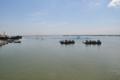 মেঘনা নদী.png