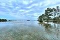 ひたち海浜公園 - panoramio (166).jpg