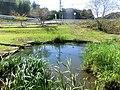 天池(あまいけ) - panoramio.jpg