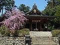 明日香村飛鳥 飛鳥坐神社 Asuka-ni-masu-jinja 2012.4.10 - panoramio.jpg