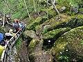 綠淵潭 Lvyuan Lake - panoramio (1).jpg