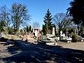 - Cmentarz Nowofarny - panoramio (7).jpg