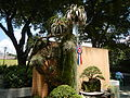05525jfMidyear Philippine Orchid Show Circle Quezon Cityfvf 15.JPG