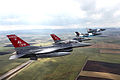 100th Fighter Squadron F-16s with Romanian Air Force MiG-21s.jpg