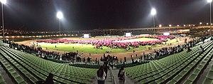 World's Largest Human Awareness Ribbon