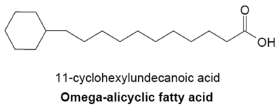 Structural Biochemistry Organic Chemistry Lipids
