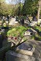 1417viki Cmentarz żydowski przy ul. Lotniczej. Foto Barbara Maliszewska.jpg