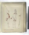 17-o Regimento di Linea GUADALAXARA. (1806) (NYPL b14896507-87843).tiff