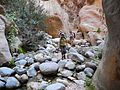 17 Wadi Ghuweir Trail to Feynan - On Our Way to the Oasis - panoramio.jpg