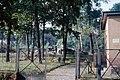 1961-00-00 Kontrollpunkt Dreilinden und Teltowkanalbrücke 9.jpg
