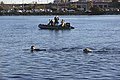 1st MSOB Canine Handler Surf Passage and Zodiac insert training 160209-M-AX605-009.jpg
