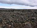 2008-05-20 14 49 42 Iceland-Skinnastaður.JPG