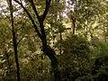 20121027 0687 Sintra 20.jpg