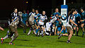 2014 Women's Six Nations Championship - France Italy (149).jpg