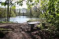 2016 0429 105539 NSG Kipshagener Teich, Schloß Holte, GT-004.jpg