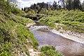 2019 05 Riezupes dabas parks (137).jpg