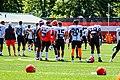 2019 Cleveland Browns Training Camp (48532038376).jpg