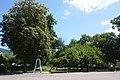21-212-5015,виноградів, дендропарк.jpg