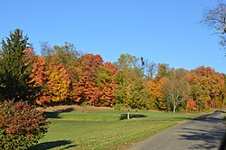 Autumn scene in the township's far northwest