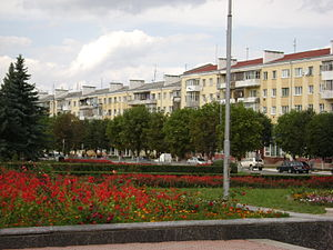 Central part of Dolyna