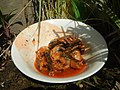 2839Home cooking of ginisang sayote, ampalaya and carrots 36.jpg