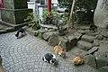 2 Chome-3 Enoshima, Fujisawa-shi, Kanagawa-ken 251-0036, Japan - panoramio (1).jpg