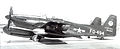 319th FAWS North American F-82F Twin Mustang 46-494.jpg