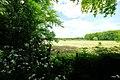 3981 Bunnik, Netherlands - panoramio (101).jpg