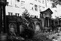 47abwviki Cmentarz żydowski na Ślężnej. Foto Barbara Maliszewska.jpg