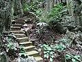 51 Staircase (9124242464).jpg