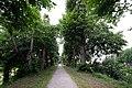 7041 's-Heerenberg, Netherlands - panoramio - Ben Bender (29).jpg